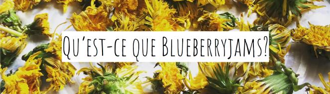 blueberryjams what is -2